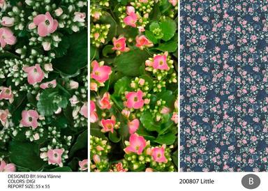 irina 200807 little-02.jpg
