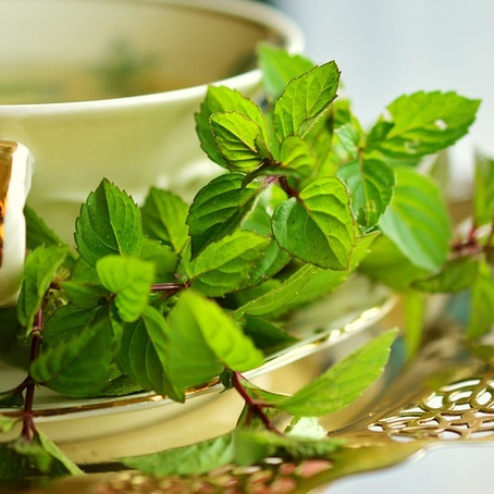 11 Minty Ways to Improve Your Health & Wellness