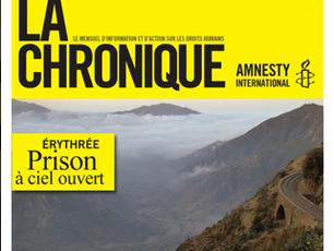 Amnesty International, Dossier Érythrée