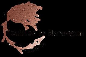 Logo_zin.png