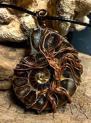 Ammonite Fossil Copper Tree of Life Wire Wrap
