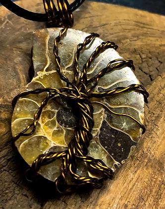 Ammonite Fossil Bronze Tree of Life Wire Wrap