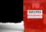 SuccessInsideOut E-book Mockup.png