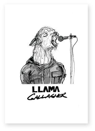 Llama dressed as Liam Gallagher singing, LLAMA GALLAGHER FUNNY CARD, HOW FUNNY GREETING CARD