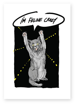 Crazy cross eyed cat dancing, FELINE CRAZY FUNNY CARD, HOW FUNNY GREETING CARD