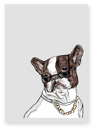French bulldog wearing sunglasses and a gold chain, MR BIG FUNNY CARD, HOW FUNNY GREETING CARD