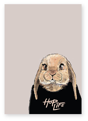 BUNNY IN JUMPER, HOP LIFE, BABY RABBIT, FUNNY CARD, HOW FUNNY