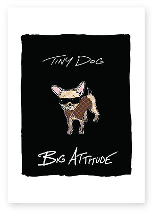 chihuahua wearing sunglasses and a coat,TINY DOG BIG ATTITUDE FUNNY CARD, HOW FUNNY GREETING CARD