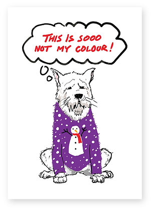 Dog annoyed at horrible Christmas jumper put on him,SOOO NOT MY COLOUR! FUNNY CARD, HOW FUNNY GREETING CARD