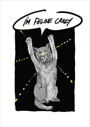 Cross Eyed Cat With Paws In The Air, I'm Feline Crazy Funny Print, How Funny Prints, Funny Wall Art, Humour Print