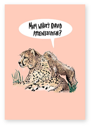Cheetah Baby Cheetah funny animal card how funny