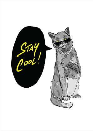 Cat Wearing Sunglasses Saying Stay Cool!,Stay Cool! Funny Print, How Funny Prints, Funny Wall Art, Humour Print