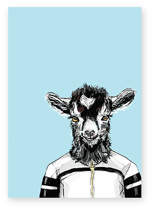 Baby Goat wearing cool track top, Indie Kid FUNNY CARD, HOW FUNNY GREETING CARD