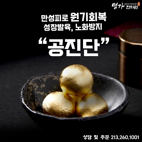 명가 나노 공진단 10환