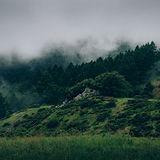 Туман и Природа