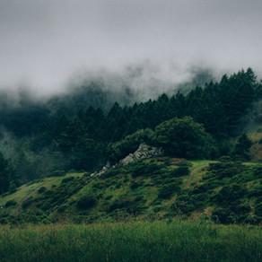出雲、松江、鳥取。