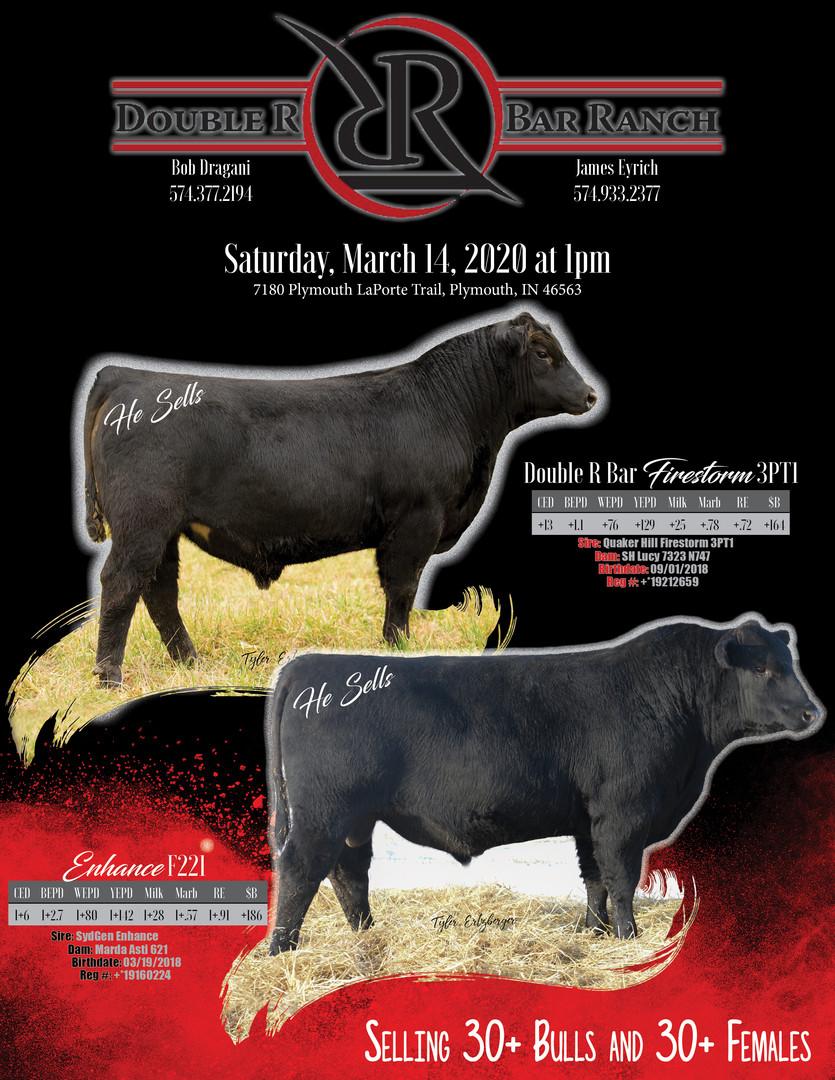 2020 Bull Sale Flyer For Denver Final.jp