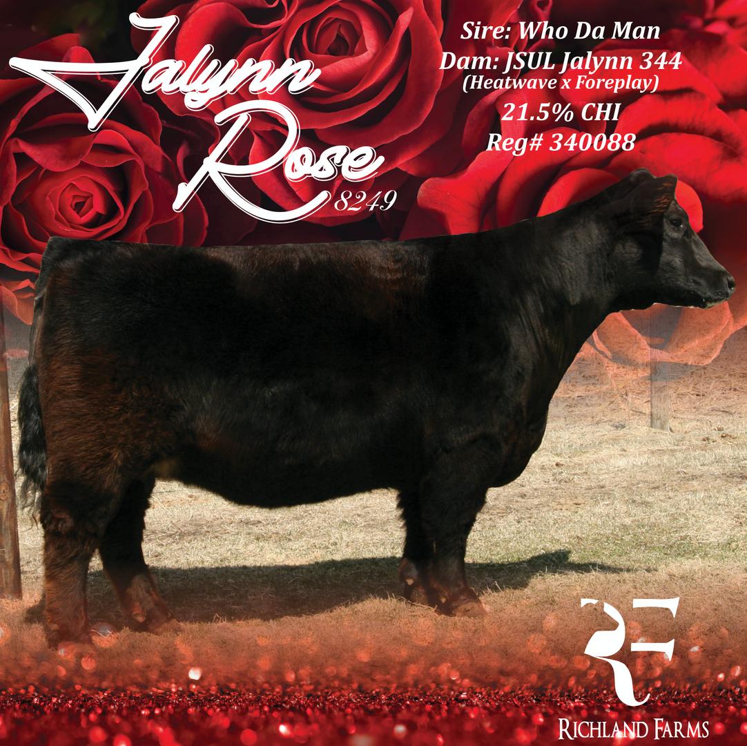 Jalynn Rose Banner 4ftx4ft2.png