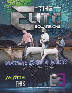 The Elite_Cover(sized).jpg