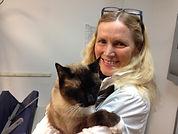 veterinarian, Cat Vet, Dog Vet, Horse Vet
