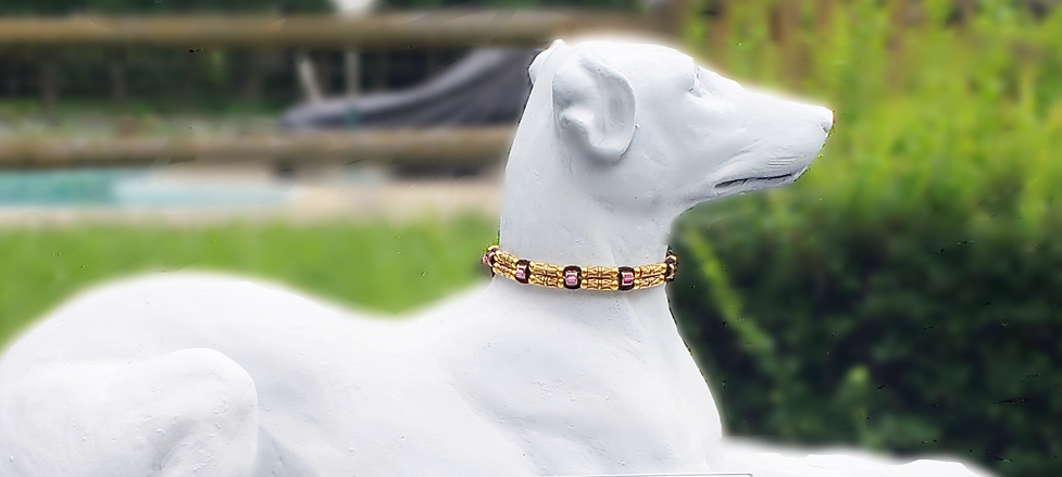 Simply Licky Crown White Dog 11 Sign_edi