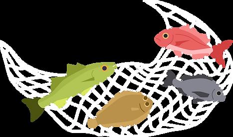 地引き網.png