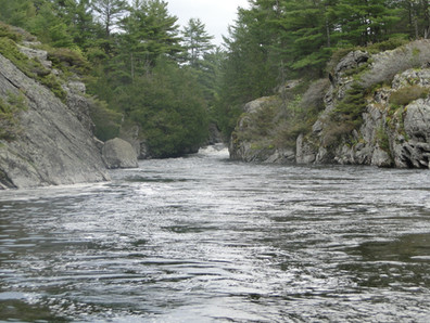 Little French Rapids (Pickerel River)