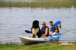 Kayak chien lac Aureilhan