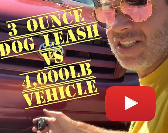 vehicle-web-lazy-leash-dog-leash-clip-on