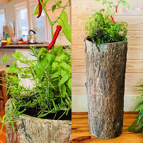 Bushy Box 🌿 Indoor / Outdoor Kitchen & Balcony Fresh Herb Garden Planter 🍃