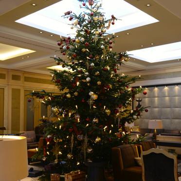 Weihnachten_Epps_BlumenCult3.jpg