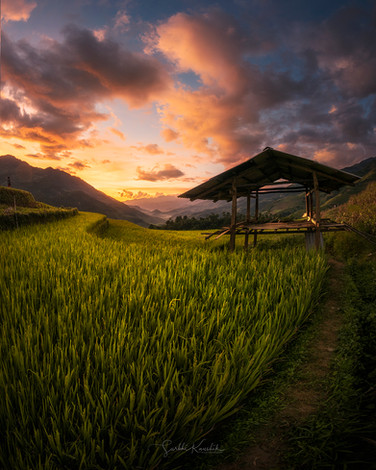 Sunset from the rice fields 01