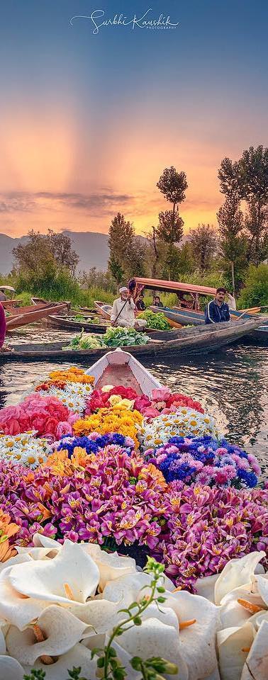 Morning Market at Dal Lake, Srinagar