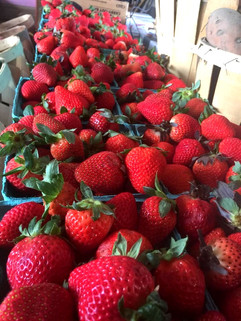 2019%20strawberries%204_edited.jpg