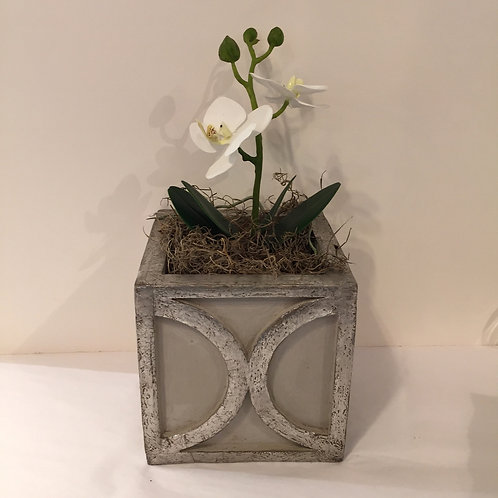 Cachepot with Lifelike Orchid