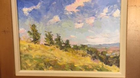 Hilltop, Looking Down by Priscilla Long Whitlock 12x16