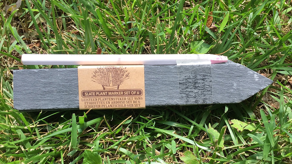 Slate Garden Markers with pencil