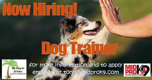 hire trainer.jpg