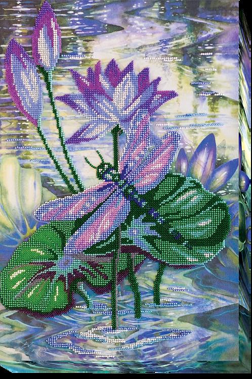Among Water-lilies