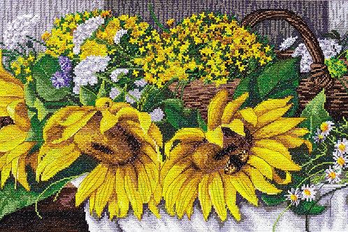 Sunflowers - Abris Art, Ukraine