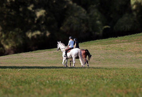 Horse riding, Private Events in Wales