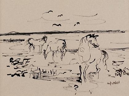 Chevaux en Camargue, dessin, 1975.png