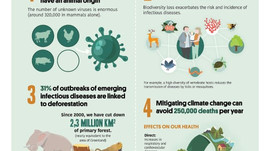 7 facts why our health depends on the environment