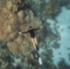 Freediving. Dahab, Egypt