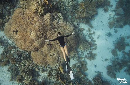 Dahab, Egypt. Freediving Dahab
