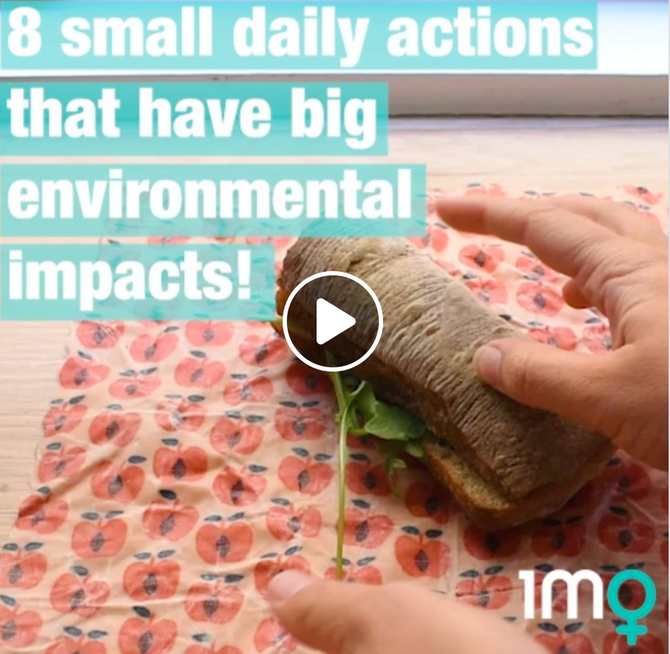 8 Daily Actions We Can Take That Have A Massive Impact!