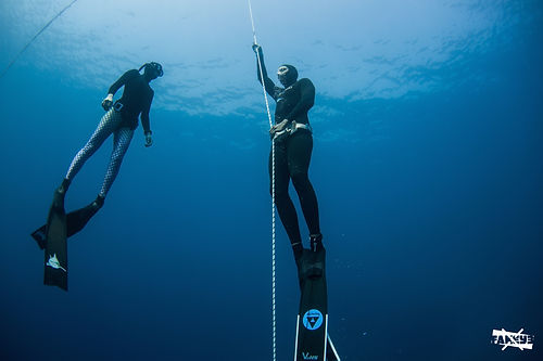 Dahab, Egypt. Freediving Dahab. Freediving courses