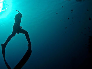Freediving courses. Dahab, egypt
