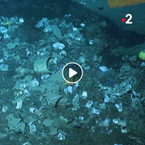 At depth in the Mediterranean Sea