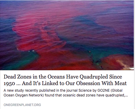 Dead Zones in the Oceans Have Quadrupled Since 1950 … And It's Linked to Our Obsession With Meat